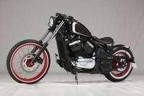 Acheter moto KAWASAKI VN 800 ARTEK Custom