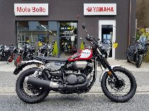 Töff kaufen YAMAHA SCR 950 Retro
