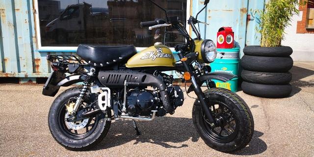 Motorrad kaufen SKYTEAM Monkey 125 Skymini Occasion