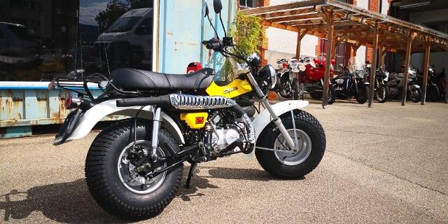Motorrad kaufen SKYTEAM T-Rex 125 Occasion