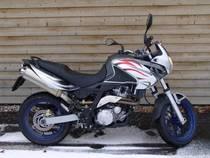 Motorrad kaufen Neufahrzeug APRILIA Pegaso 650 Strada (enduro)