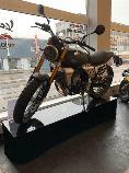 Töff kaufen FANTIC MOTOR Caballero 500 Scrambler Flat Track Edition Retro