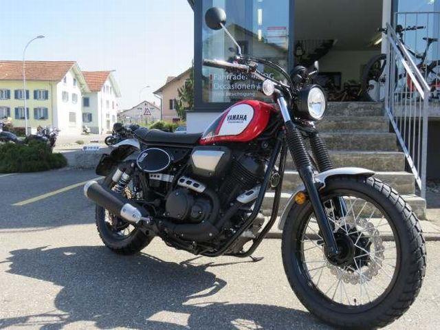 Motorrad kaufen YAMAHA SCR 950 Vorführmodell