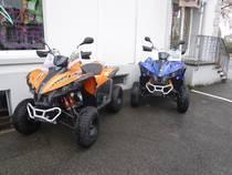 Motorrad Mieten & Roller Mieten TGB Target 325 (Quad-atv-ssv)