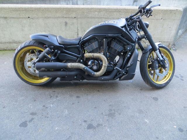 Motorrad kaufen HARLEY-DAVIDSON VRSCDX 1250 Night-Rod Special ABS Custombike Occasion