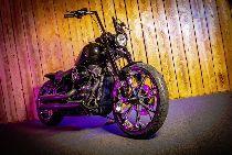 Töff kaufen HARLEY-DAVIDSON FLSB 1745 Softail Sport Glide 107 Custombike Custom
