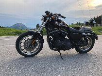 Motorrad kaufen Occasion HARLEY-DAVIDSON XL 883 RXL Sportster Roadster (custom)