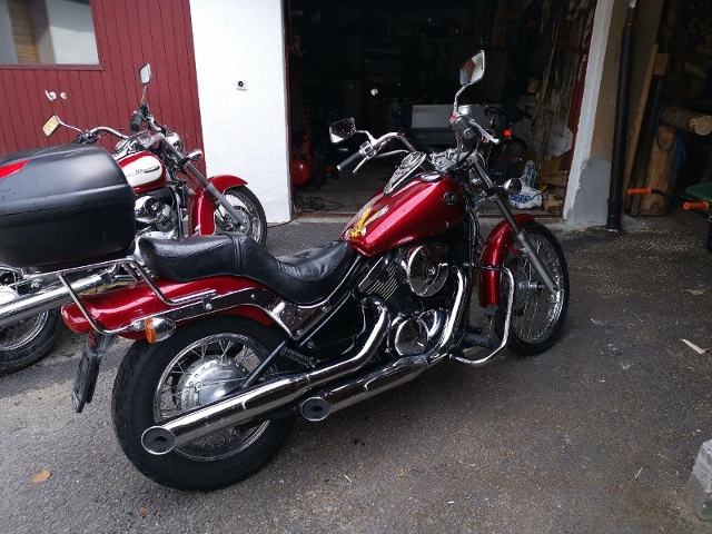 Motorrad kaufen KAWASAKI VN 800 Occasion