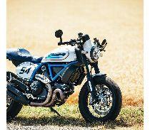 Töff kaufen DUCATI 803 Scrambler Café Racer Retro