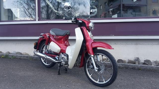 Motorrad kaufen HONDA C 125 A Super Cub ABS Neufahrzeug