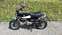 Motorrad kaufen Vorführmodell HONDA Z 125 MA Monkey (naked)