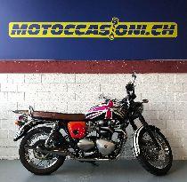 Motorrad kaufen Occasion TRIUMPH Bonneville T100 900 (retro)