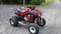 Motorrad kaufen Occasion DINLI DL 904-450 (quad-atv-ssv)