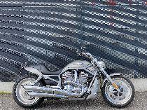 Motorrad kaufen Occasion HARLEY-DAVIDSON VRSCAW 1130 V-Rod (custom)