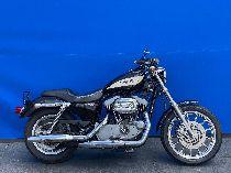 Motorrad kaufen Occasion HARLEY-DAVIDSON XL 1200 R Sportster Roadster (custom)