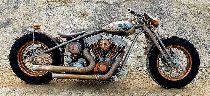 Töff kaufen HARLEY-DAVIDSON Spezial TGS MOTORCYCLES Custom