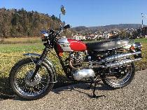 Motorrad kaufen Oldtimer TRIUMPH T100C