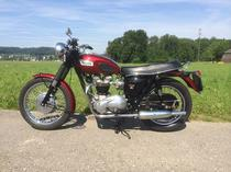 Motorrad kaufen Oldtimer TRIUMPH T6R
