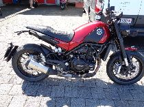 Motorrad kaufen Occasion BENELLI Leoncino 500 (retro)