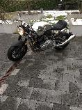 Motorrad kaufen Occasion NORTON Dominator 961 (naked)