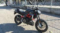 Motorrad kaufen Vorführmodell APRILIA Shiver 900 (naked)