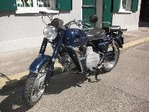 Motorrad kaufen Oldtimer MOTO GUZZI NF 500 Nuovo Falcone (custom)