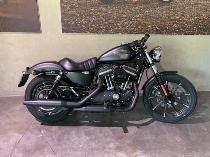 Motorrad kaufen Occasion HARLEY-DAVIDSON XL 883 N Iron ABS