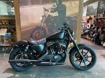 Töff kaufen HARLEY-DAVIDSON XL 883 N Sport. Iron ABS alle