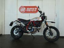 Motorrad kaufen Vorführmodell DUCATI 803 Scrambler Desert Sled (retro)
