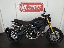 Motorrad Mieten & Roller Mieten DUCATI 1100 Scrambler Pro (Retro)