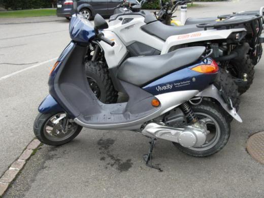 Motorrad kaufen PEUGEOT Vivacity 50 (45km/h) Occasion