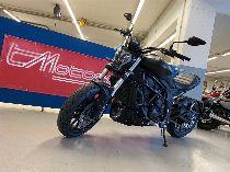 Motorrad kaufen Vorführmodell BENELLI 502C (naked)