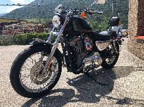 Töff kaufen HARLEY-DAVIDSON XL 883 Sportster Custom