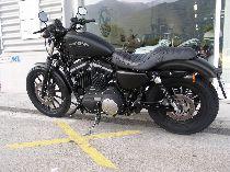 Aquista moto Occasioni HARLEY-DAVIDSON XL 883 N Iron (custom)