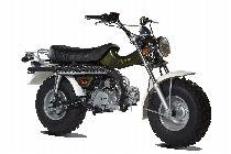 Motorrad kaufen Neufahrzeug SKYTEAM T-Rex 125 (touring)
