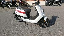 Motorrad kaufen Neufahrzeug NIU NGTs (roller)