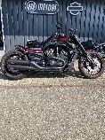 Bild des HARLEY-DAVIDSON VRSCDX 1250 Night-Rod Special ABS
