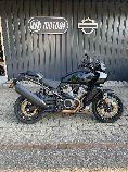 Motorrad kaufen Vorführmodell HARLEY-DAVIDSON RA 1250 S Pan America Special (touring)