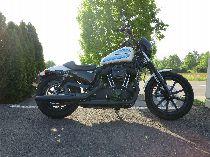 Töff kaufen HARLEY-DAVIDSON XL 1200 NS Sportster Iron ABS Custom
