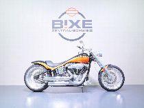 Motorrad kaufen Occasion HARLEY-DAVIDSON FXSTC 1584 Softail Custom (custom)