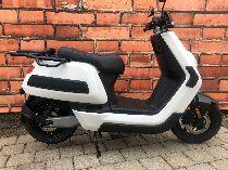 Motorrad kaufen Neufahrzeug NIU N Cargo (roller)