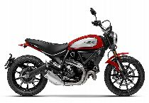 Motorrad kaufen Neufahrzeug DUCATI 803 Scrambler Icon (retro)