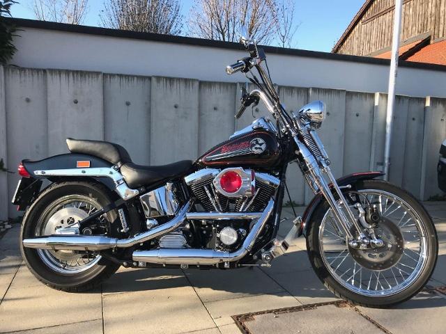 Motorrad kaufen HARLEY-DAVIDSON FXSTC 1340 Softail Custom Springer Occasion