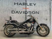 Töff kaufen HARLEY-DAVIDSON FLFB 1745 Fat Boy 107 Custom