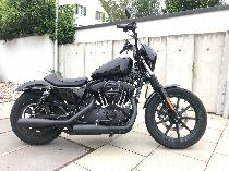 Töff kaufen HARLEY-DAVIDSON XL 1200 NS Sportster Iron blacked out Custom