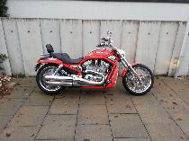 Motorrad kaufen Occasion HARLEY-DAVIDSON VRSCSE 1250 Screamin Eagle V-Rod (custom)