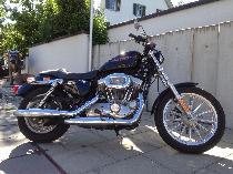 Motorrad kaufen Occasion HARLEY-DAVIDSON XL 883 Sportster (custom)