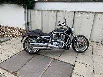 Acheter moto HARLEY-DAVIDSON VRSCAWA 1250 V-Rod ABS Custom
