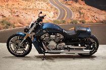 Töff kaufen HARLEY-DAVIDSON VRSCF 1250 V-Rod Muscle ABS Custom