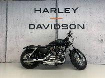 Töff kaufen HARLEY-DAVIDSON XL 1200 C Sportster Custom Umbau mit Kess Custom